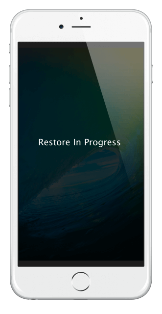 restore_in_progress