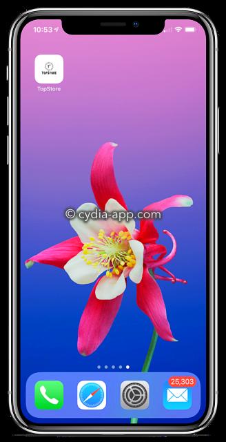 topstore vip iphone x
