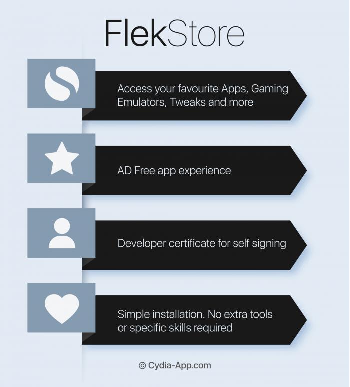 flekstore app infographic
