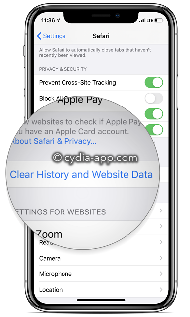 clear history and website data iphone 11