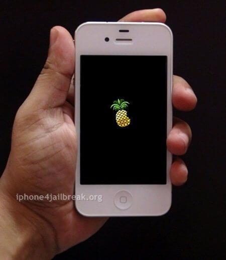 pineapple logo iphone 4 pwnapple